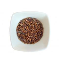 Maniguettes - Graines du Paradis
